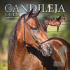VICTORIA-Candileja-ColorStallBanner-LR