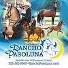 Rancho-Paso-Luna-ColorStallBanner-1-LR