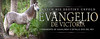 Evangelio-by-trees-3x8banner-LR
