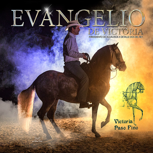 VICTORIA-Evangelio-ColorStallBanner-LR