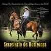 Trote y Galope stallion - Stall Banner