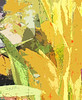 Yellow gladiolus  fabric design
