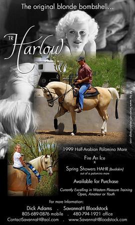 Harlow1