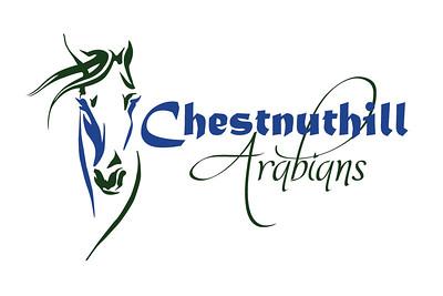 CHA-logo-HORZ