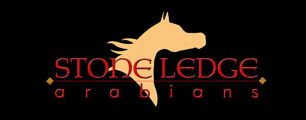 StoneLedge_logofinal-JPEG