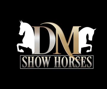 DMSH-Logo-OnBlack