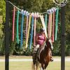 """Saddle Up! is... blazing new trails"""