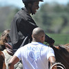 """""""Saddle Up! is... pure joy"""""""