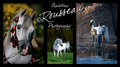 Banner / poster. http://www.christinarousseauphotography.com