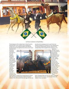 BrazilianNationals2015AHT-7pgs2