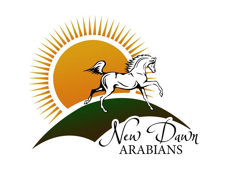 NewDawnArabs_logo