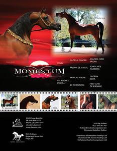 MomenteumSC2-print
