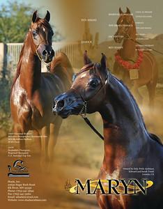 Maryn side2 copy