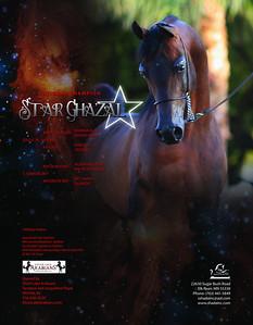 StarGhazalSC2