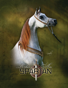 Spartan_SC1