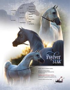 PSYLVER STAR VF-SC2