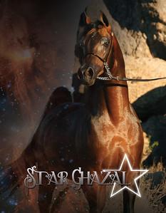StarGhazalSC1