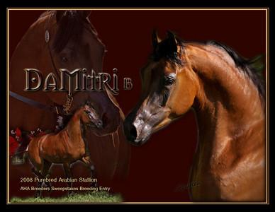 DaMitriPhoto2