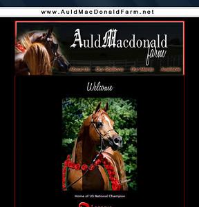 Website Design, redesign & art direction