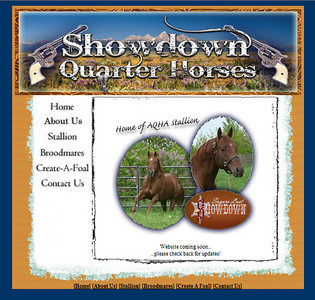 //www.showdownquarterhorses.com