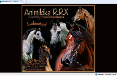 Website up for viewing! http://www.animikikarrx.com