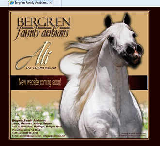 //www.bergrenfamilyarabians.com New Website Coming Soon!