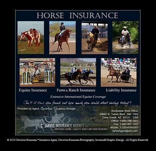 //www.horseinsuranceagent.com