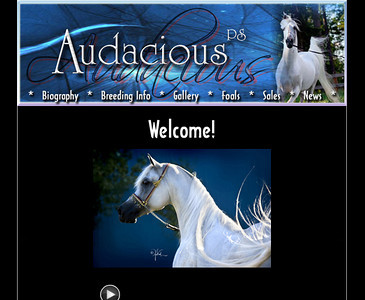 Audacious PS website 2007-2010. Info on Audacious PS can now be found on: http://www.varianarabians.com , the new home of Audacious.