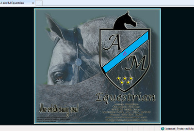 New website coming soon! http://www.aandmequestrian.com