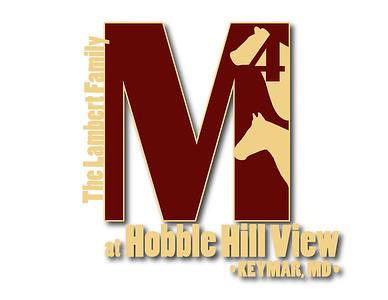 M4_logo