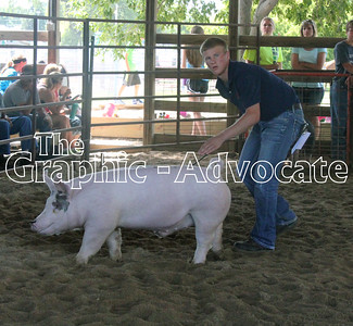 A 4-H member guides a pig during the Swine Show Friday morning at the Calhoun County Expo. GRAPHIC-ADVOCATE PHOTO/ERIN SOMMERS