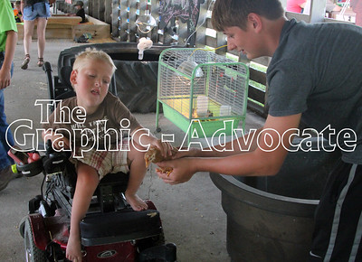 Rylan Wuebker, 4, checks out a chick in the Family Fun Barn at the Calhoun County Expo. Branden Barney holds the bird for Wuebker. GRAPHIC-ADVOCATE PHOTO/ERIN SOMMERS
