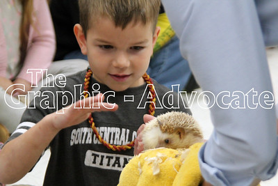 Dillon Graeve touches a pygmy hedgehog Nov. 6 at South Central Calhoun Elementary School. GRAPHIC-ADVOCATE PHOTO/ERIN SOMMERS
