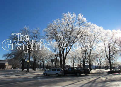 Sunlight makes the ice on trees around the Lake City Square sparkle, following last week's ice storm. GRAPHIC-ADVOCATE PHOTO/TONI VENTEICHER