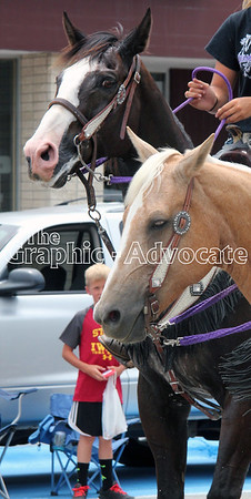 Horses are seen during Lake City's Western Days parade Saturday afternoon. GRAPHIC-ADVOCATE PHOTO/ERIN SOMMERS