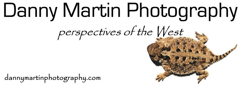 Get the DMP logo with one of Danny's favorite critters - the Short-horned Lizard - on select merchandise, all for a bargain!