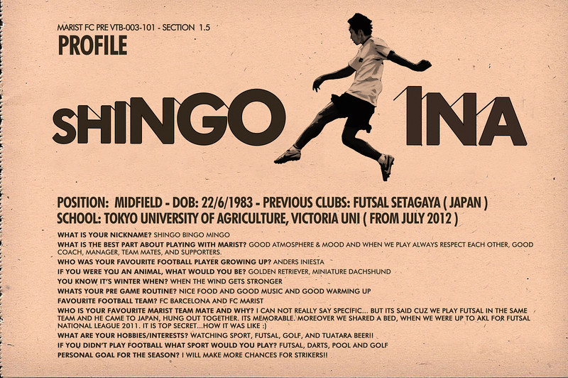 Shingo Ina - Player Profile (Magazine Design)