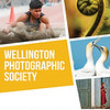Wellington Photographic Society