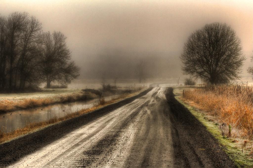 RoadatRefugesofter