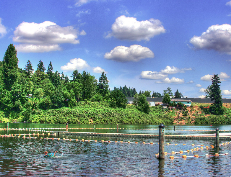 Summer Pond Ready for Swimming