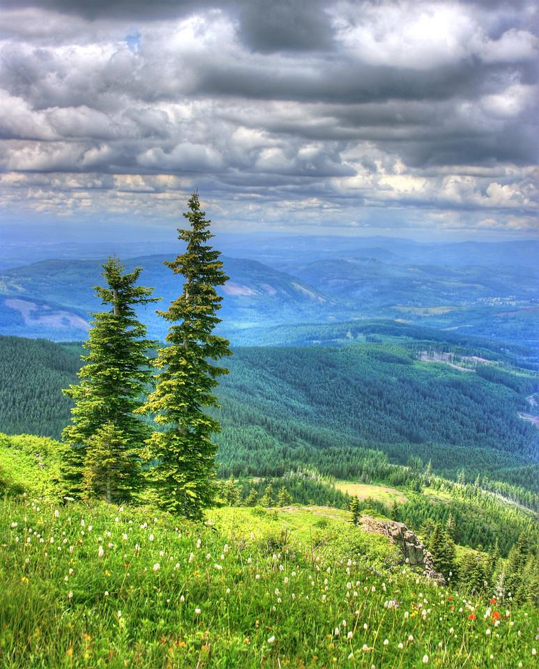 Silverstar Mountain Hike