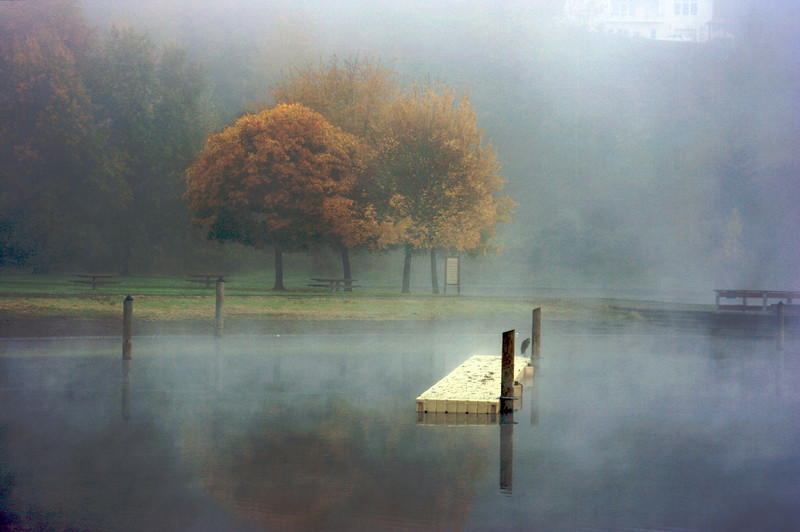 Swimming Dock in the Foggy Pond