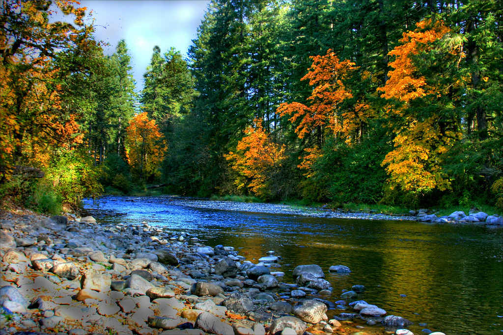 Lewisville River,Lewisville park