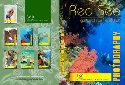 dvd--cd-general-reef-and-fish