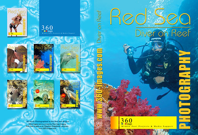 dvd--cd-diver