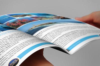 Brochure--tem05