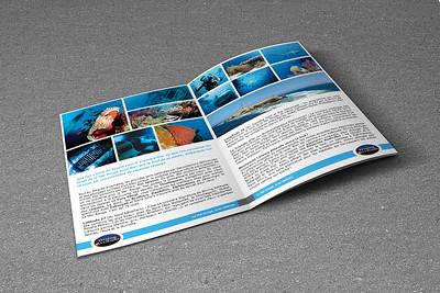 diving-attitude-brochure-2015-tem02