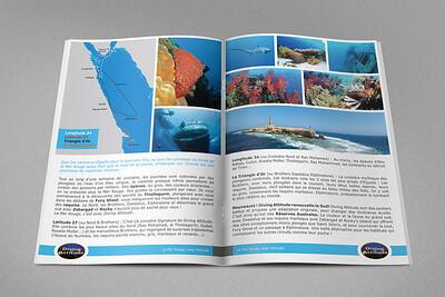 Brochure--tem04