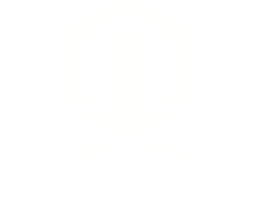KN Logo white suisse font
