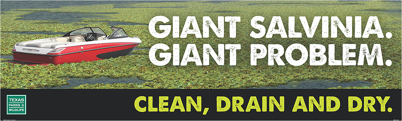 Giant Salvinia. Giant Problem. Clean, Drain, Dry